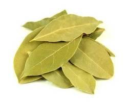 Defne Yaprağı 100 gr